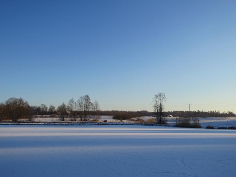 2. janvāra rīts - auksts un skaidrs (man pie loga -17,3, kaimiņi stāsta par -19).