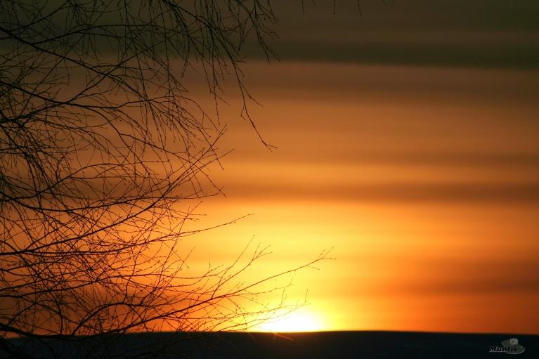 29.03.2013. Saulītei lecot, -16.
