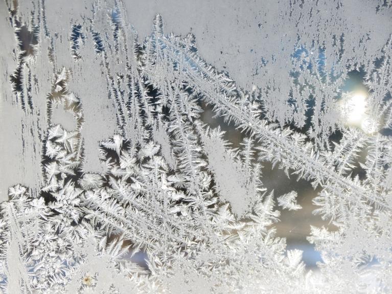 Janvāris - leduspuķes