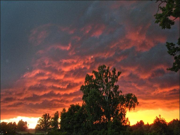 Autors: ilga123. Saulriets pirms negaisa Kurmenē (10.06.)