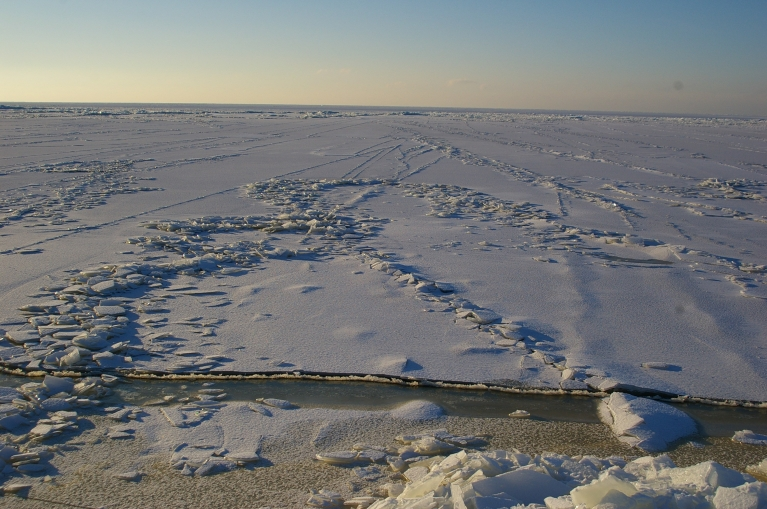 Autors: Mulkari. Ledus jūrā pie Saulkrastiem, 27.01.