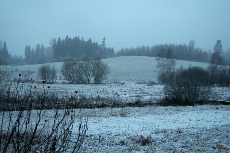 12.01. Pirmais šāgada sniedziņš.