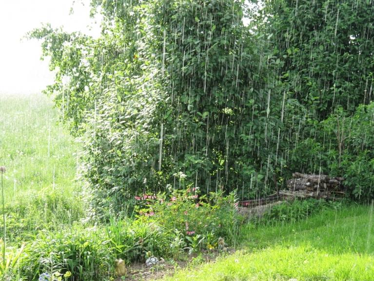 Saule spīd un lietus līst - pa retam kāds arī kaut ko nopilina