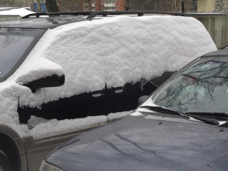 Februāī mēnesis bija nabadzīgs ar sniegu, silts. 1. februāra sniegputenis nesa dažas mikro-kupenas. Vērots Rīgā.