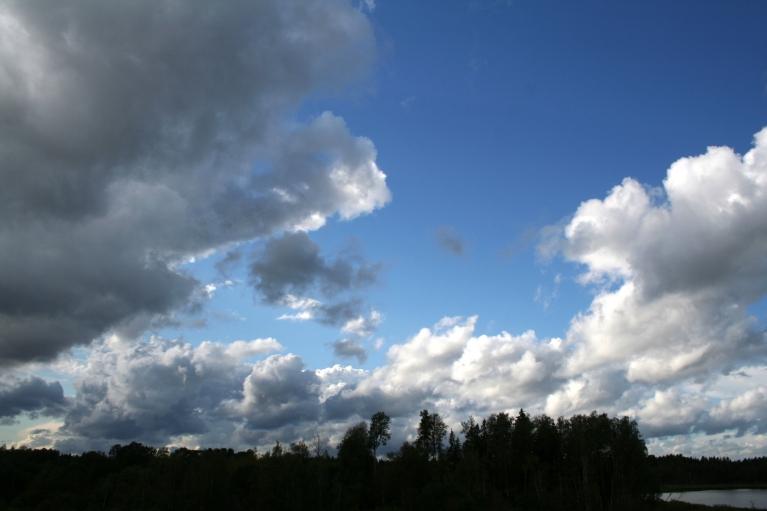 Autors: muntis. Vecpiebalga, 23.augusta pievakare - ZR puse