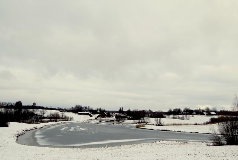 Pirmais februāris atkal ziemīgi baltā krāsā.