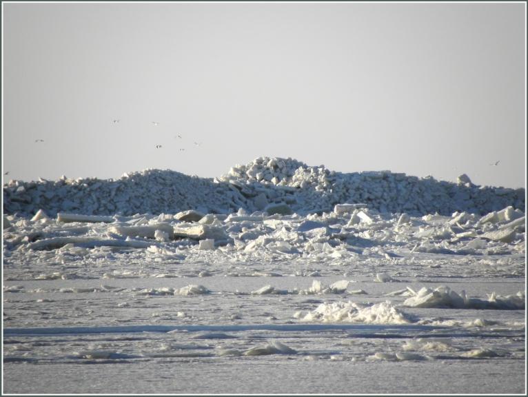 Daugavgrīvā uz vietas tapa skaidrs gājiena mērķis-masīvi kravumi kadus 800 m no krasta