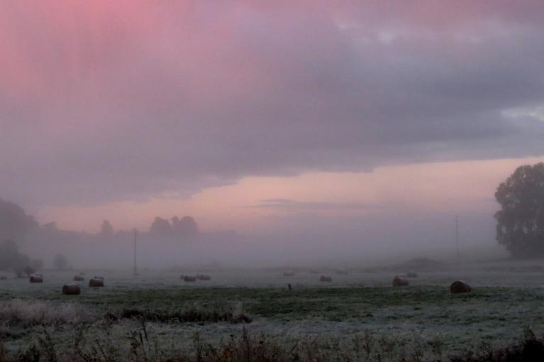 Saullēktā debesis atstaroja sārtu atblāzmu.