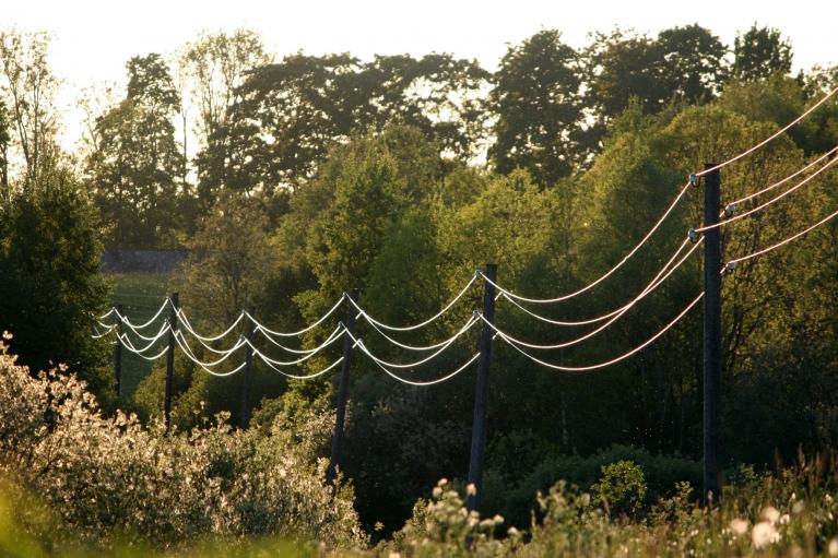 Autors: muntis. Saules apspīdēti elektrības vadi, Vecpiebalga, 3.jūnijs