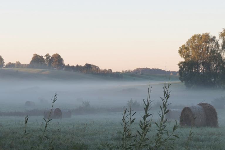 Ne ar ko neatšķiras arī 8. septembra rīts - man pie mājas tie paši +2,2, pļavā vēl vēsāks.