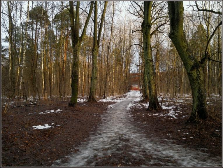 Autors: gubumākonis. Janvāra sākums Rīgā. (2.01.)