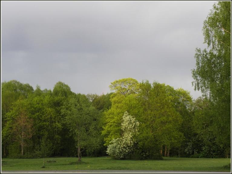 12. maijs, auksta fronte un ilgi gaiditais lietus