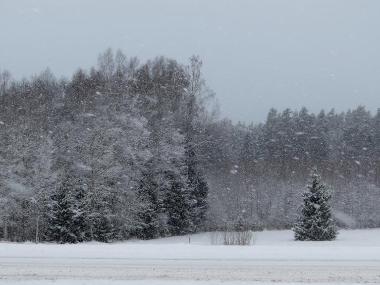 Sniegs snieg lielām pikām, bet ir ļoti viegls.
