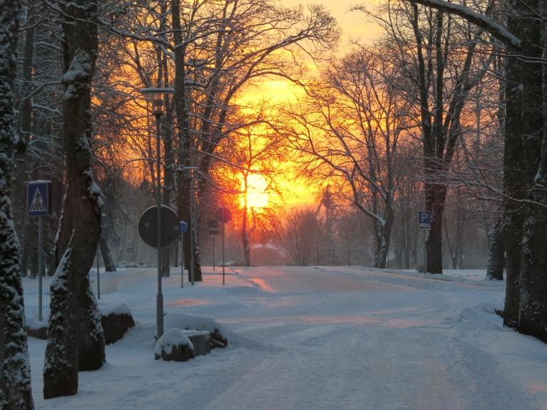 Pirmās jaunā gada darba dienas rīts (4.01.) Siguldā.