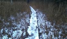 Salacas upes krastos