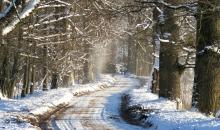 Janvāra ziemas ierašanās.