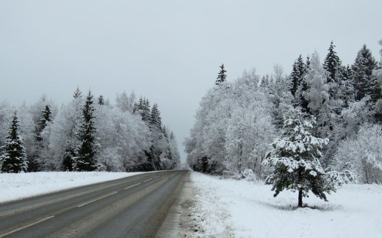 1. decembris, ceļš Allaži-Sigulda.