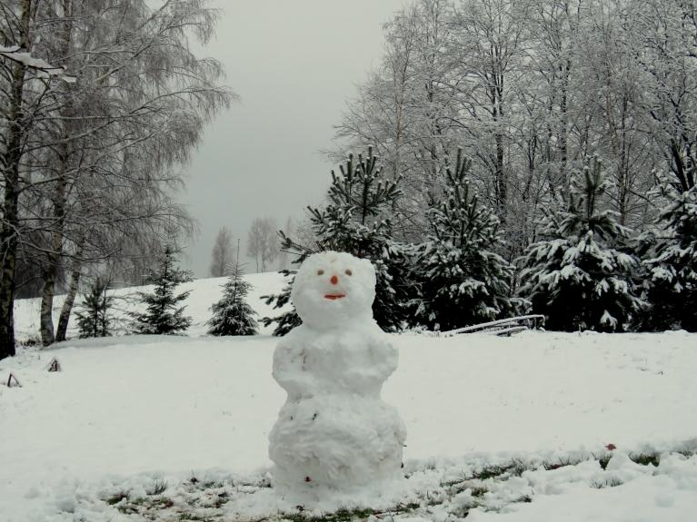 Sniega izstrādājums (1. decembra modelis).