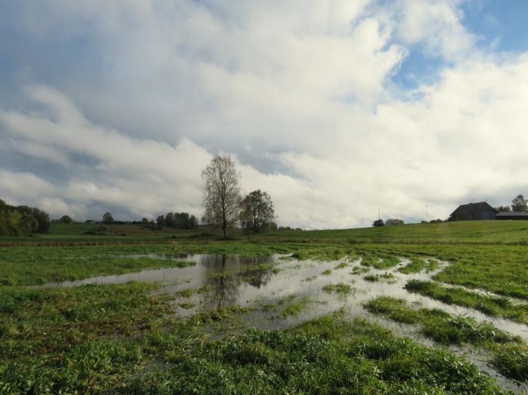 8. oktobra pēcpusdiena, pa ielejas pļavu mēģinu aizbrist līdz Tumšupītei. Konstatēju, ka gumijas zābakā ir caurums...