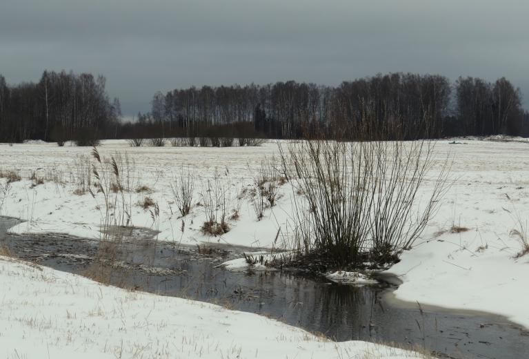 Rīta tumšie mākoņi norāda uz sniega krājumu papildināšanos.