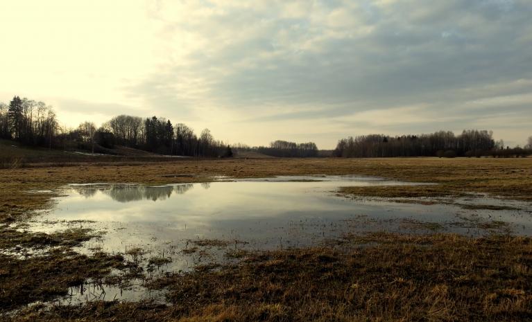 Pļavā lielas ūdens peļķes.