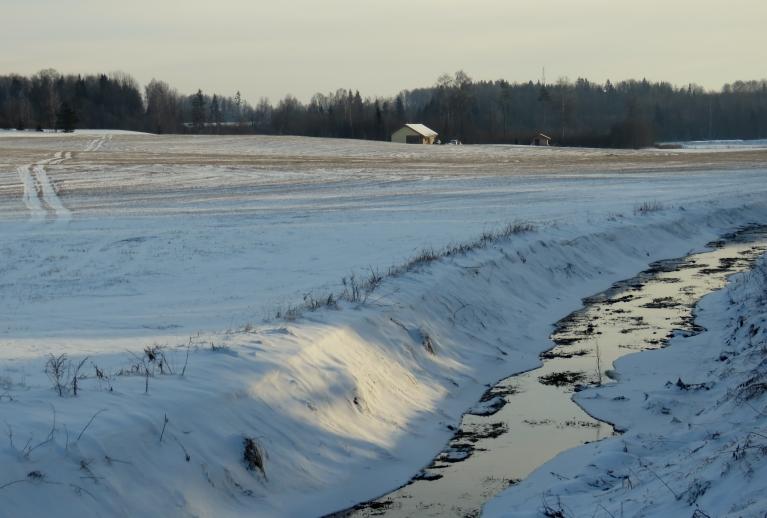 Sniega uz laukiem nav pārāk daudz. Lielākas kupenas sapūstas grāvmalās un gar ceļiem.