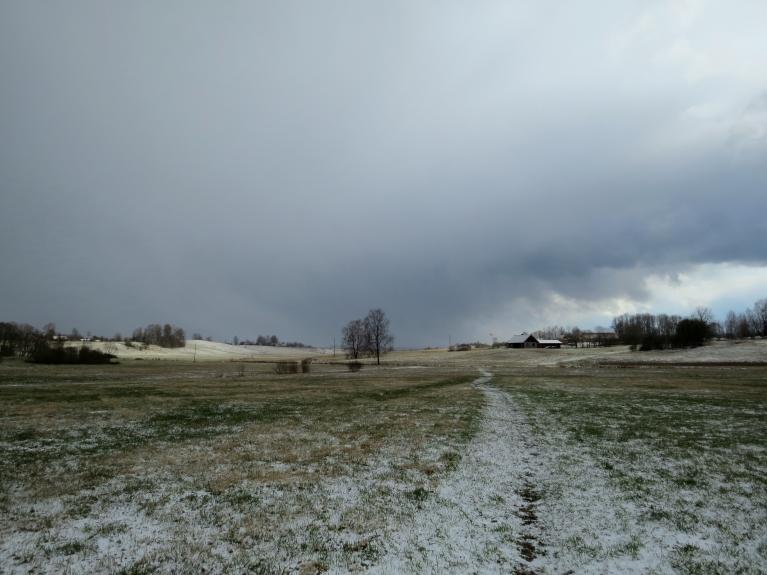 Saule gan tūdaļ steidzās sniegu nokausēt.