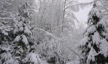 Laika apstākļi 7.-9.decembrī