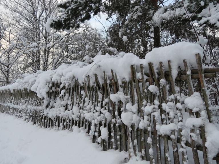 """Autors: Ceļotājs. Sniegotā Kurzemes piekraste Ventspilī. Sniega pūtēja darbības rezultāts pie """"Lemberga hūtes"""" 9.12."""
