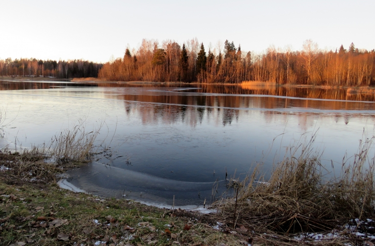 Dīķi ar spēcīgu caurteci vēl tikai ar daļēju ledus kārtu.