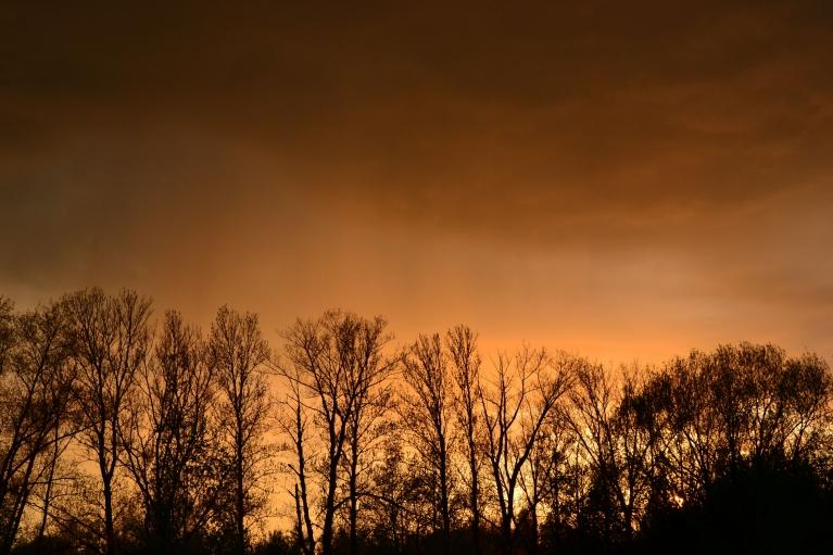 7. maija vakarā sākumā uzrodas dzeltenas debesis, bet tās nokavēju. No saulrieta puses nāk lietus mākonis, tāpēc pret sauli izskatās, ka līst oranžs lietus (tas Rietumrīgā, toties centrā tas jau bija pārtapis par rozā lietu). Vēlāk debesis nokrāsojās…