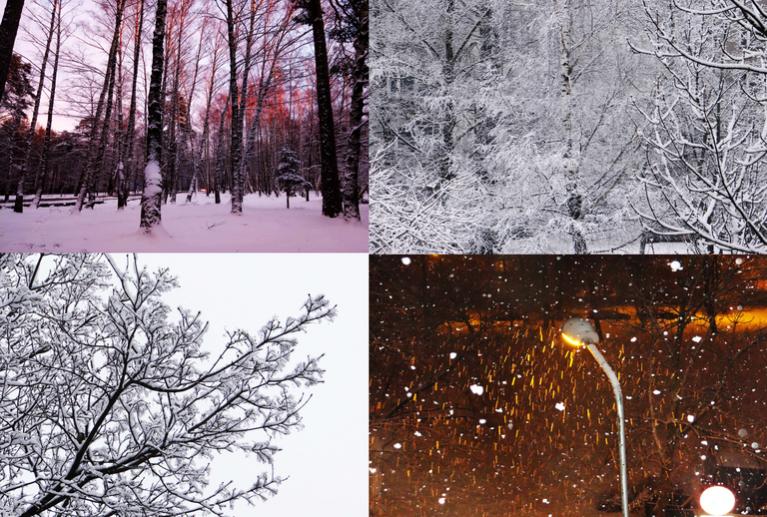 Janvāris kā janvāris sācies ar ziemu un beidzies ar ziemu.
