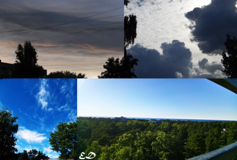 Jūlija beigās sācies siltais laika periods.