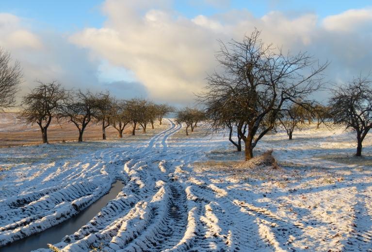 Zeme gan vēl nav sasalusi, sniedziņš tik apklājis dubļu risas.