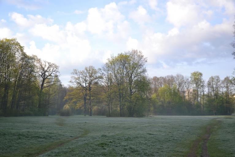 4. maija rītā ap pusseptiņiem Anniņmuižas pļavas apklājusi balta un auksta salna.