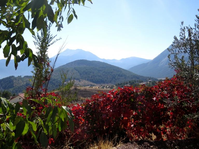 Paceļoties augstāk kalnos (~1000m virs jūras līmeņa) var saskatīt rudenīgākas krāsas.