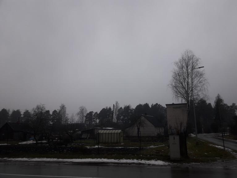 26. janvāris - līst, nokusnis, uzskatei 1 bilde 1 vietā salīdzinājumam ar bildi #4.
