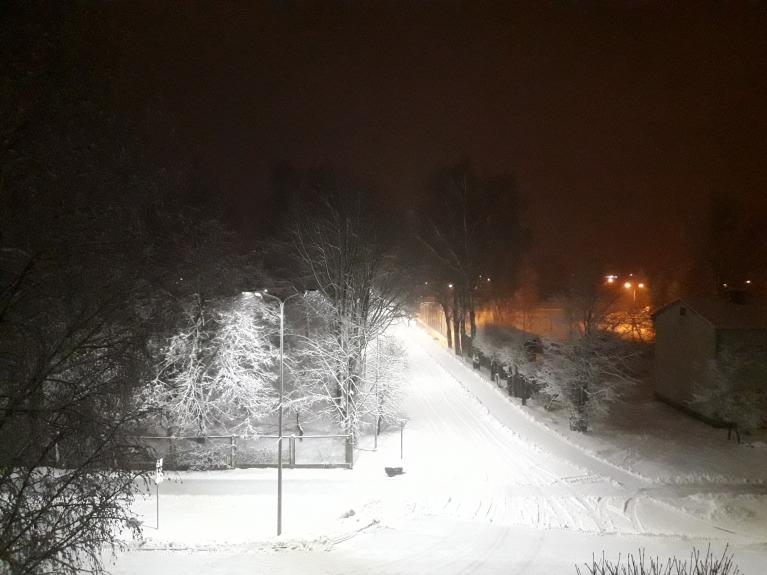 Tomēr 27. janvāra agrā rītā atkal zeme ir balta, un turpina snigt! :)