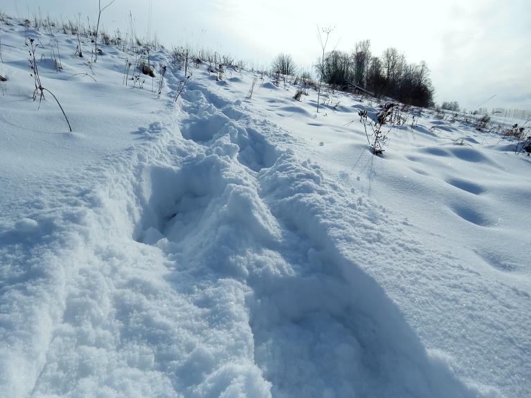 No kalna ejot, zābaki piebirst sniega pilni.