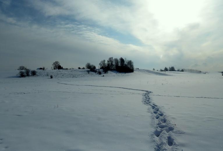 Ja pie mājas sniega segas biezums 13-14 cm, tad pļavā 18-19 cm.