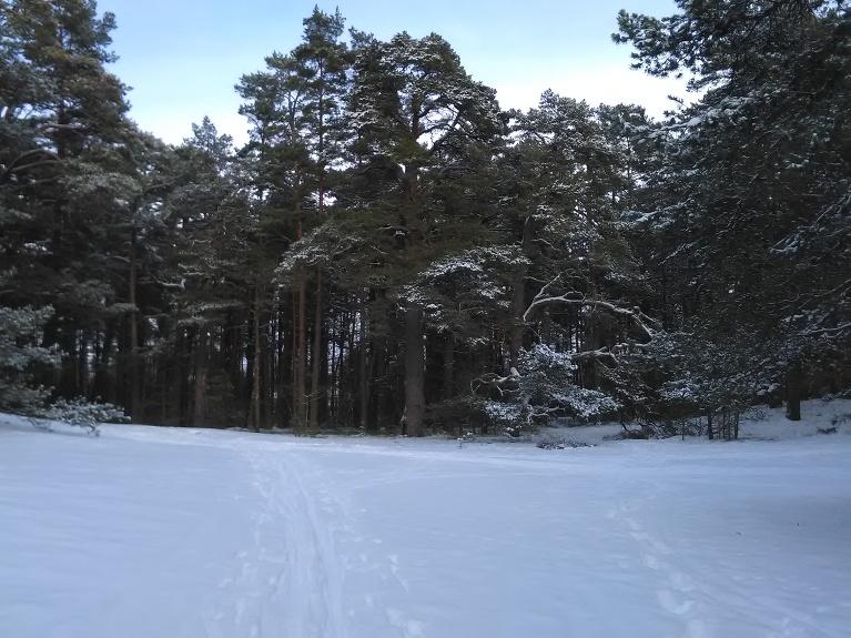 Kāpās sniegs vietām ap 15 cm.