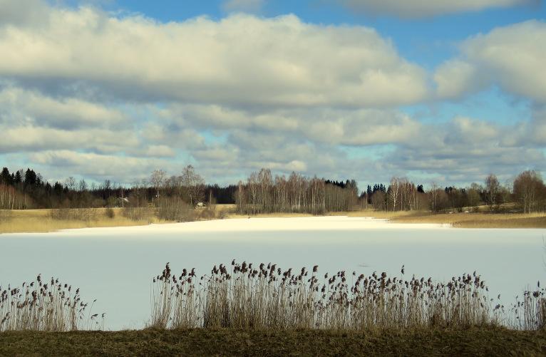23. marta dienas vidus, uz dīķiem vēl ledus vāki.