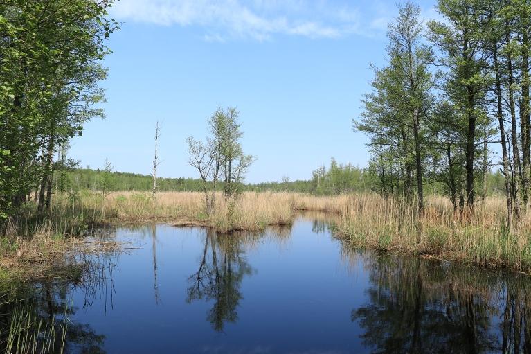 Skats uz Slokas ezeru