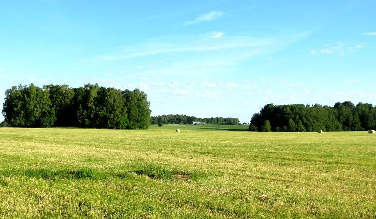 Pļavas izskatās kā citgad vasaras beigās - nopļautās platības izžūst, attāls bez mitruma neaug.