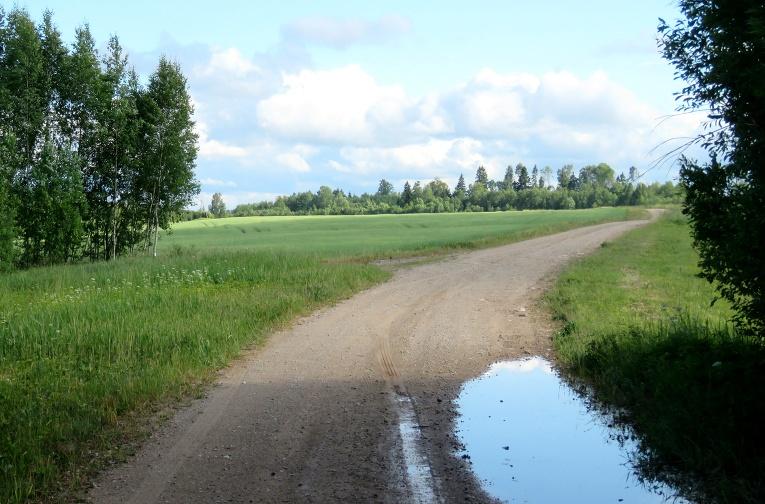 12. jūnijā pēc lietusgāzes, uz grants ceļa pat peļķes izveidojušās.