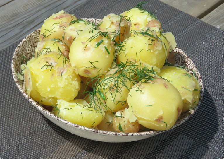 17. jūnijs, nogaršoju pirmos jaunos kartupeļus no sava dārza.
