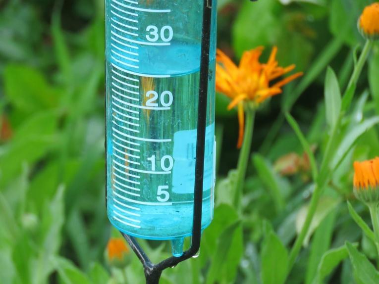 Naktī uz 22. jūniju ir kārtīgi nolijis, mērtraukā 25. mm nokrišņu.