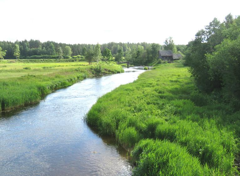 30. jūnija priekšpusdiena, Gauja pie Velēnas. Ūdens līmenis upē 0,91 m, ūdens t +17,6C