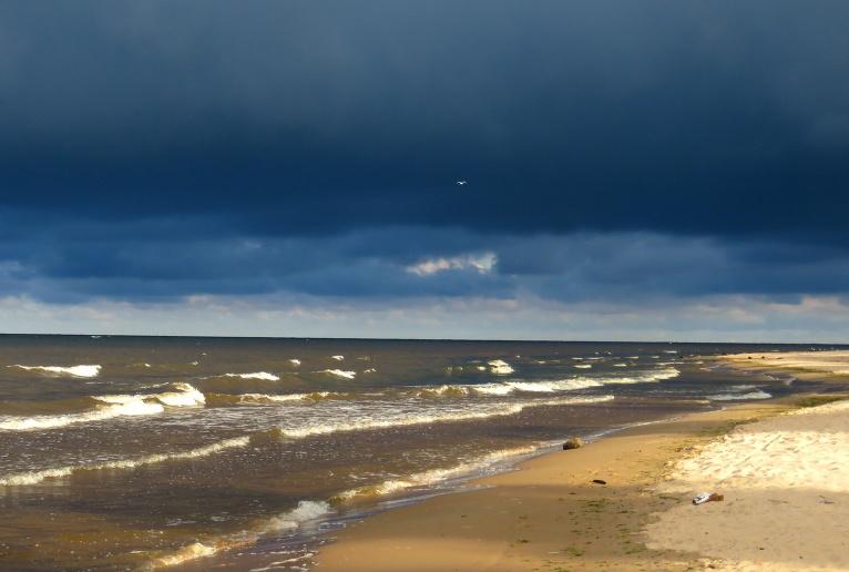 Zili padebeši, balti siltās jūriņas viļņu gali un nemierīgi kaiju saucieni- tādas atmiņas es paņemu līdzi no Vidzemes jūrmalas.
