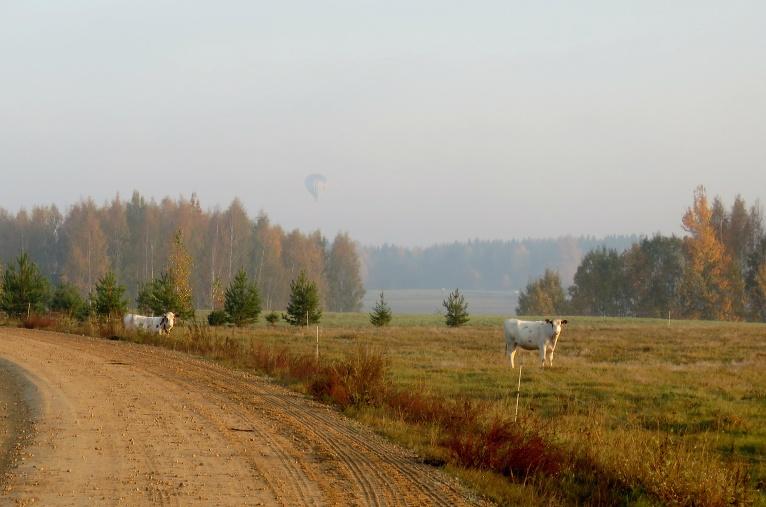 Ne diena bez gaisa balona- vēlme redzēt zelta rudeni no putna lidojuma aktivizējusi balonlidotājus.